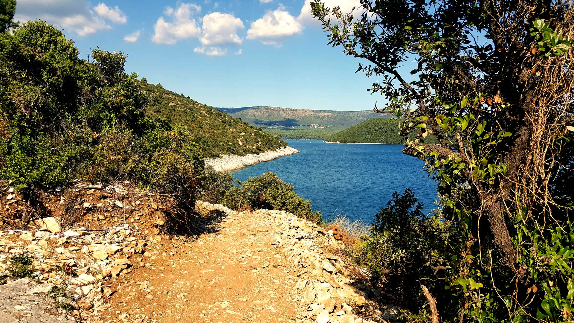 EXPLORE THE MAGICAL ISTRIA WITH PEDALISTRA